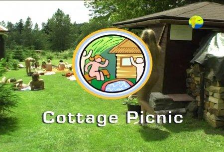Cottage Picnic / Пикник в коттедже