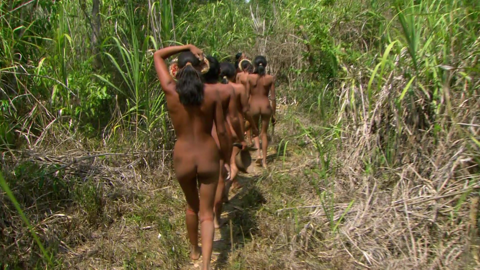Naked indigenoue from amazon erotica galleries