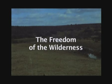 The Freedom of the Wilderness