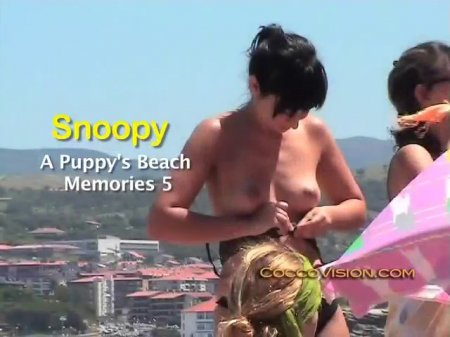 Snoopy`s A Puppy`s Beach Memories 5