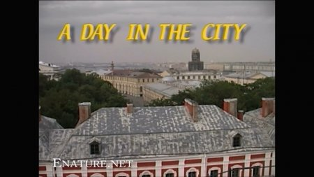 A Day In The City HD (family nudism, family naturism, young naturism, naked girls, naked boys)