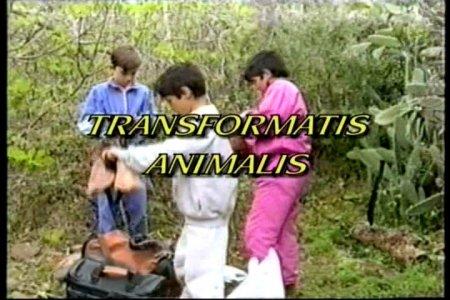 Transformatis Animalis