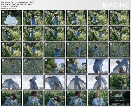 Dеn fоrtrоllade vagen (1986) (3 fragment)(young naturism, naked boys, naked girls))