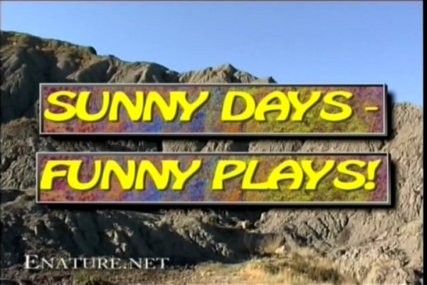 Sunny Days Funny Plays Incomplete (family nudism, family naturism, young naturism, naked boys, naked girls)